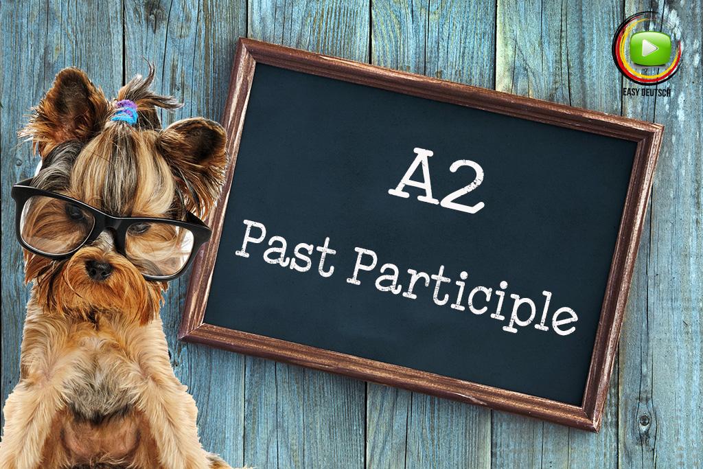 Past Participle