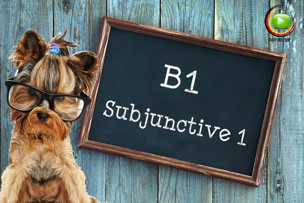 Subjunctive 1