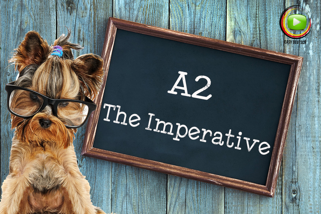The Imperative