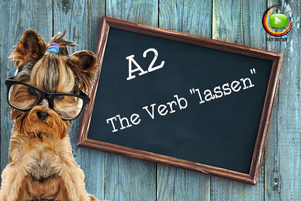 The-Verb-lassen
